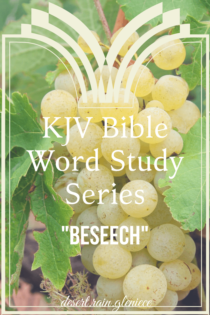When we beseech, we desire to be heard by both God and man. But with man there's no guarantee our pleas will yield their attention. But God always hear us. #beseech, #kjvbible, #wordstudy, #biblestudyforwomen