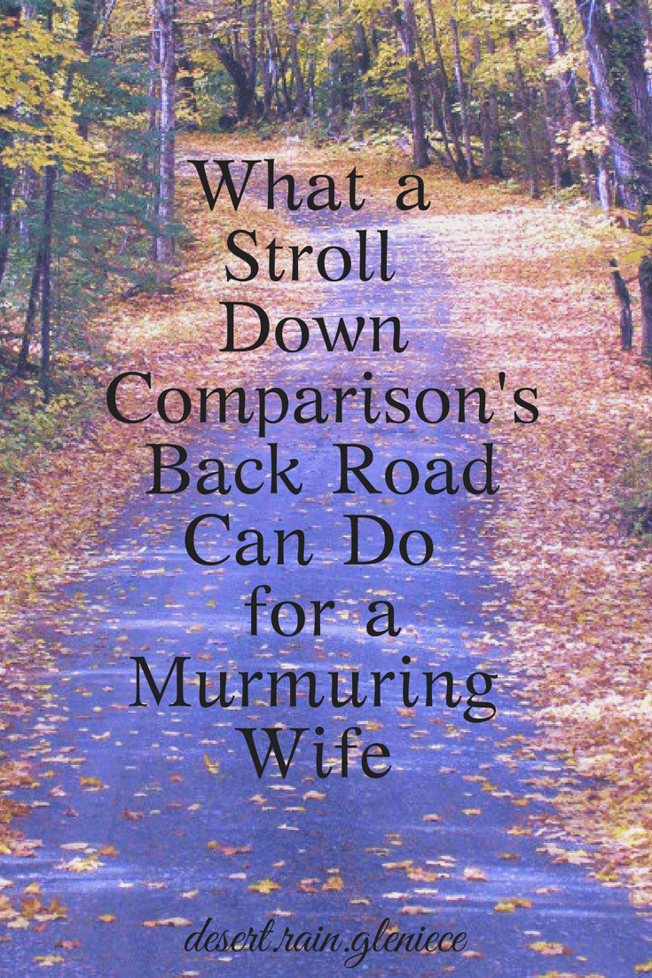 We wives can easily fall into a comparison trap. But when we change our perspective and learn to be thankful, contentment will thrive no matter what. #comparison, #contentment, #godlymarriage, #christianwife