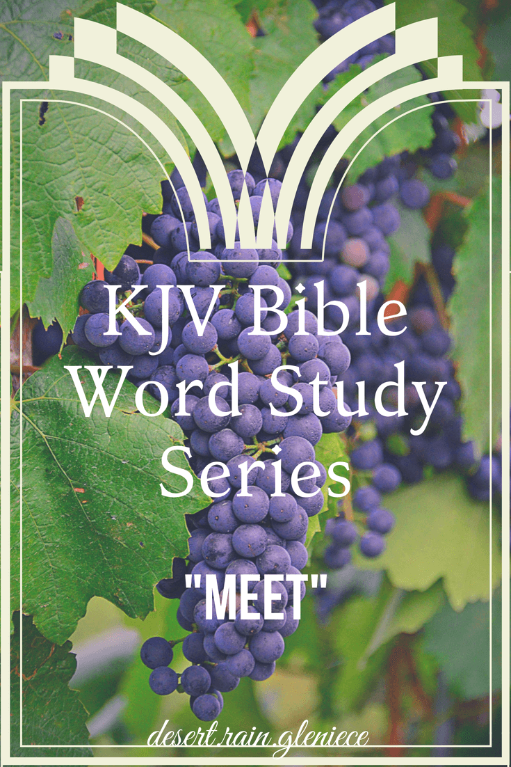 "Are you ""meet"" for the Master's use and prepared for every good work? Find out the meaning behind this obscure word and how God blesses those who repent. #meet, #kjvbible, #wordstudy, #biblestudyforwomen"