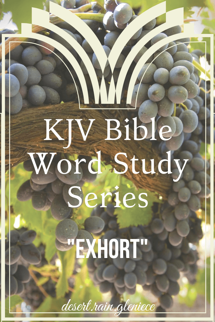 Do you have the gift of exhortation? If you speak timely words of godly wisdom that warns, comforts, and encourages, your fellow brethren in Christ—you do! #exhort, #kjv, #wordstudy, #biblestudyforwomen