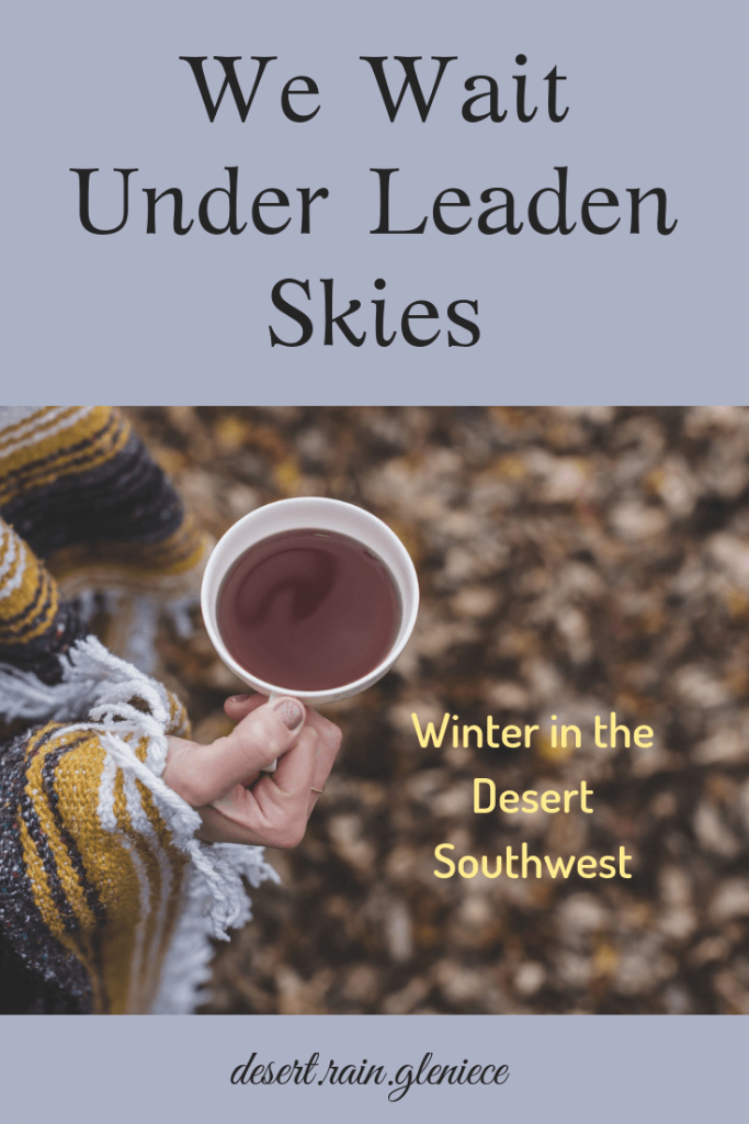 We Wait Under Leaden Skies ~ Winter in the Desert Southwest is a time of waiting. In the stillness we ask questions hard to answer. But God is with us and is listening to our heart cries. #desertsouthwest, #waitingonGod, #loneliness, #questionsandanswers