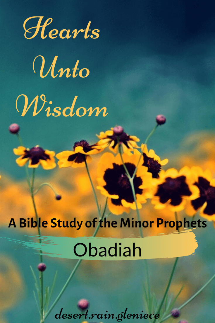 Obadiah: Hearts Unto Wisdom Bible Study of the Minor Prophets ~ Obadiah, the shortest book of the Old Testament, is brimming with God's judgment against pride, hatred, and resentment, that could defile us as it doomed the nation of Edom. #obadiah, #biblestudyforwomen, #kjvbible, #minorprophets, #pride
