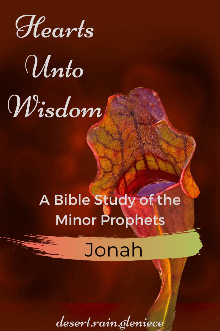 The book of Jonah is a magnificent parallel of God's love and redemption to a multitude of sorrowful people as well as lessons taught to a man who sorrowed for all the wrong reasons. #jonah, #minorprophets, #biblestudyforwomen, #kjvbible