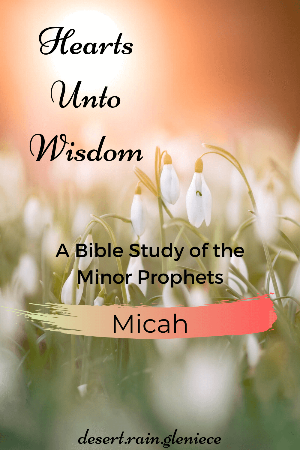 The prophet Micah knew it wasn't mere religious rituals and rote obedience that would please God but those who do these three simple things. #micah, #biblestudyforwomen, #minorprophets, #kjvbible