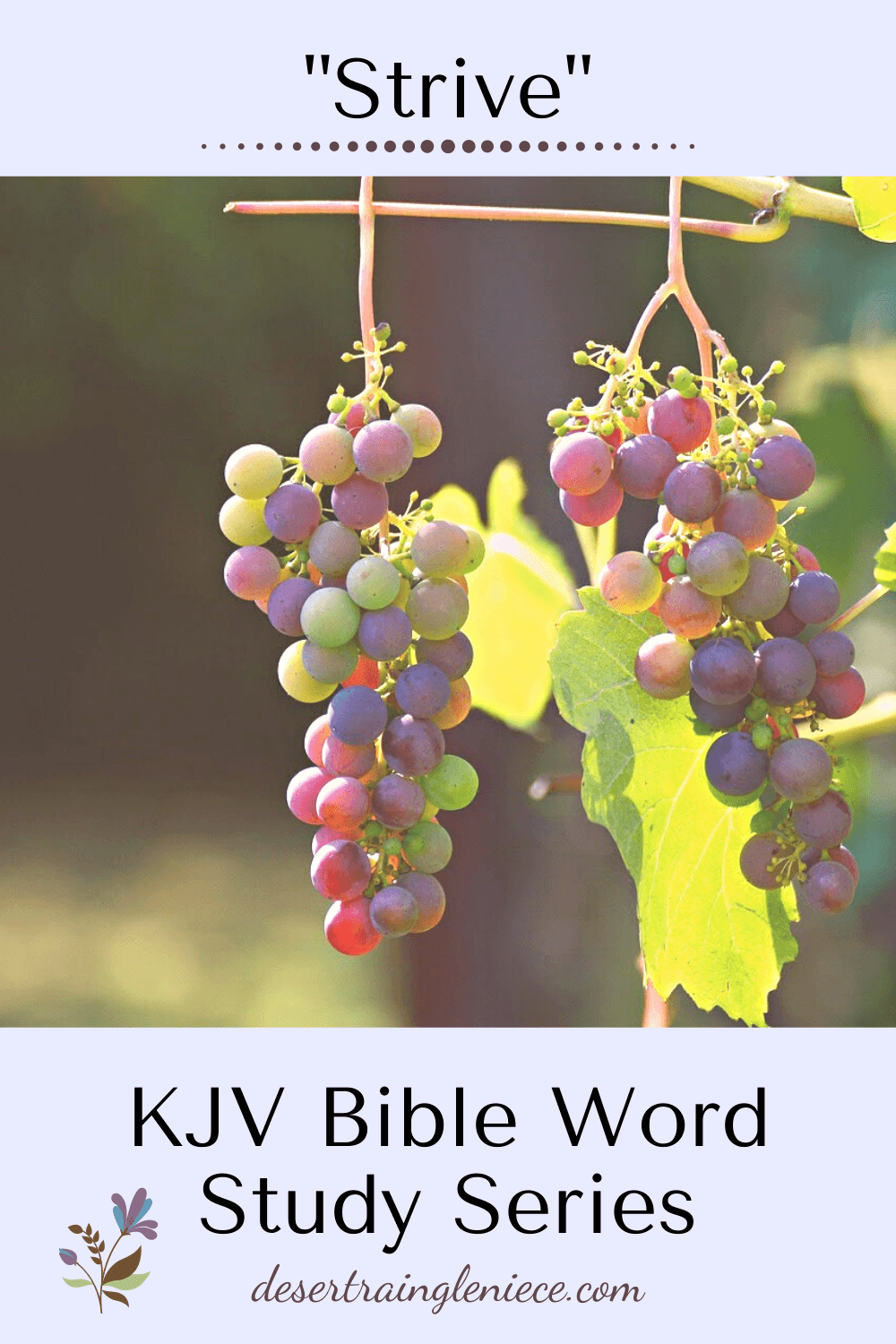 To strive or not to strive? As Christians, we are called to do both! Learn where to put your effort and where to let it go in this KJV study. #strive, #kjvbible, #wordstudy, #biblestudyforwomen